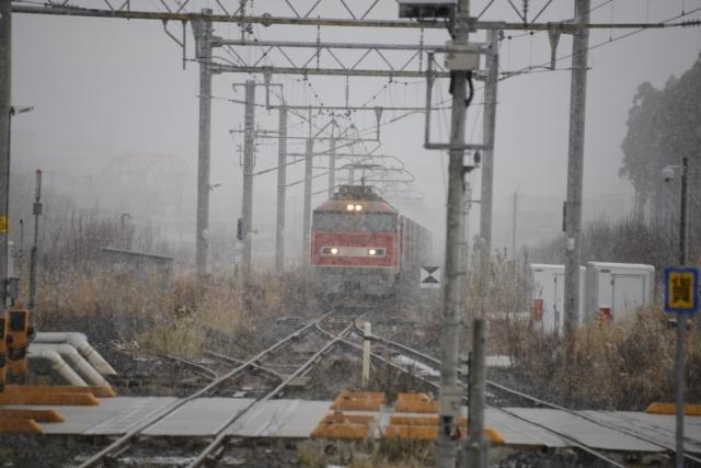 DSC_0943_R.JPG