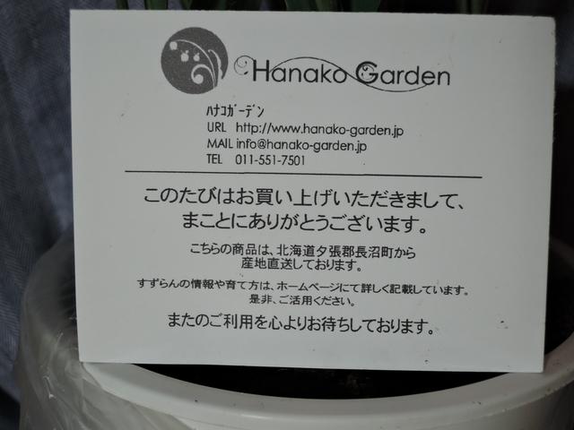 すずらん4_R.jpg
