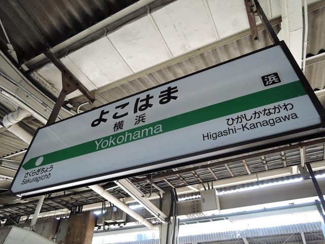生麦8_R.JPG