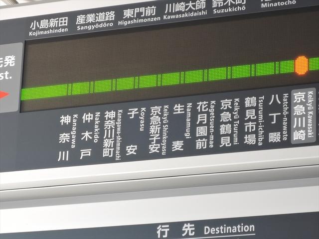 生麦9_R.JPG