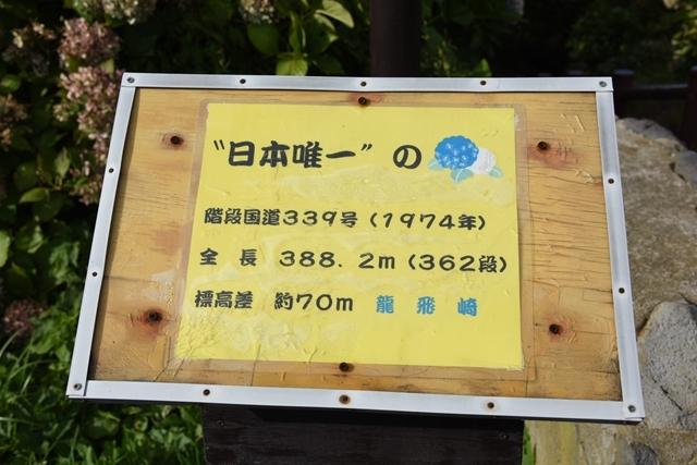 龍泊9_R.jpg