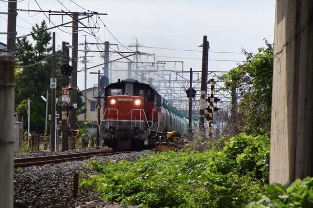 DD514.JPG