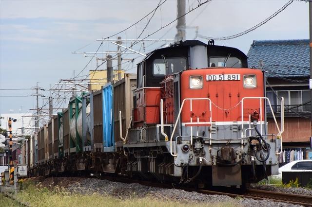 DD515.JPG