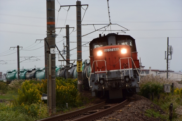 DD518.JPG