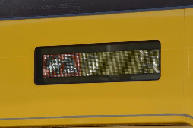 DSC_0263_R.jpg